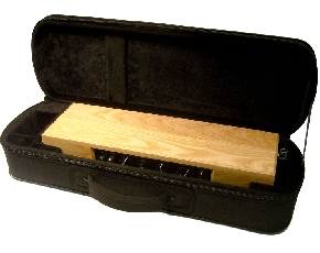 moog_etherwave_case